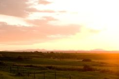 mountain field sunset dan